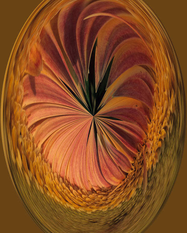 An Umber Gazania Is Depicted In An Abstract Poster featuring the photograph Gazania Umber Abstract by Keith Gondron