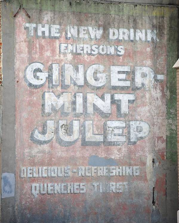 Ghost Writing Poster featuring the photograph Ginger-mint Julep by Pamela Schreckengost
