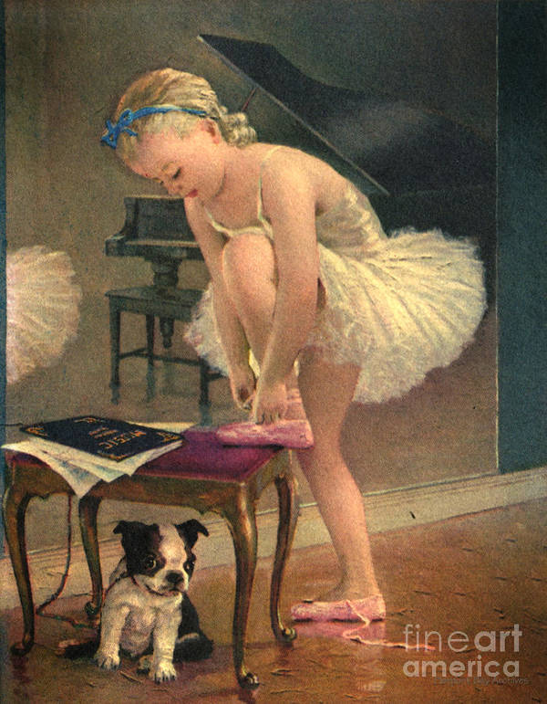 Ballet Dancer Ties Her Slipper With Boston Terrier Dog Girl Ballet Dancers Fixes Her Slippers Bench Pierpont Bay Archives Dance Tutu Black And White Puppy Pink Ribbon Gold Red Velvet Slippers Ballerina Dancer Blue Ribbons Girl Wonderful Vintage Image From Pierpont Bay Archives. Unique Poster featuring the digital art Girl Ballet Dancer Ties Her Slipper With Boston Terrier Dog by Pierponit Bay Archives