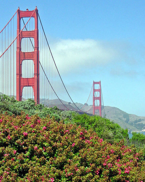 Golden Gate Bridge Poster featuring the photograph Golden Gate by Suzanne Gaff
