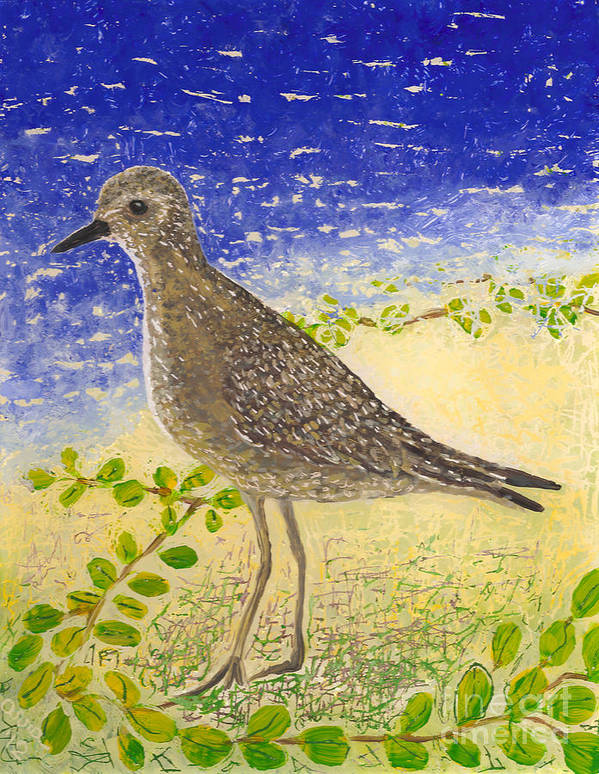 Hawaii Birds Poster featuring the painting Golden Plover by Anna Skaradzinska