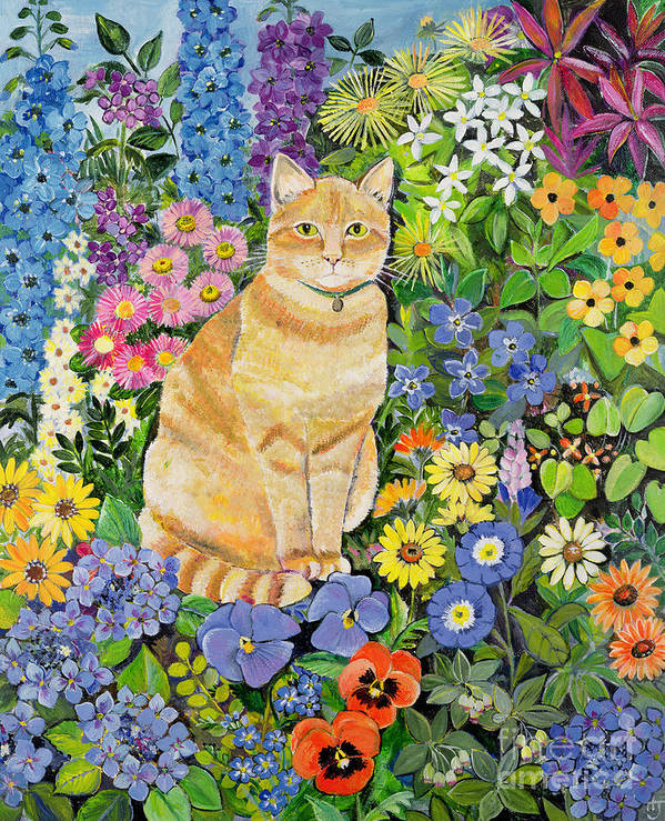 Pansy; Delphinium; Brown-eyed Susan; Lupin; Periwinkle; Ginger Tom Poster featuring the painting Gordon S Cat by Hilary Jones