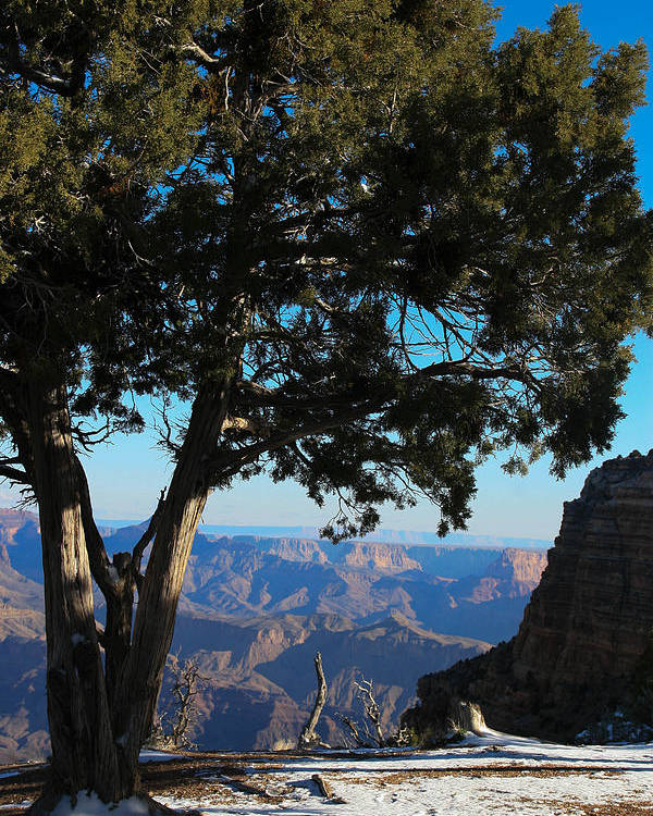 Grand Canyon Poster featuring the photograph Grand Canyon View 2 by Natural Focal Point Photography