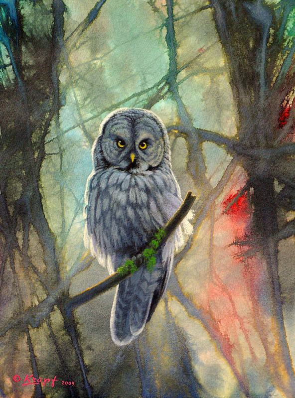 Wildlife Poster featuring the painting Great Grey Owl In Abstract by Paul Krapf