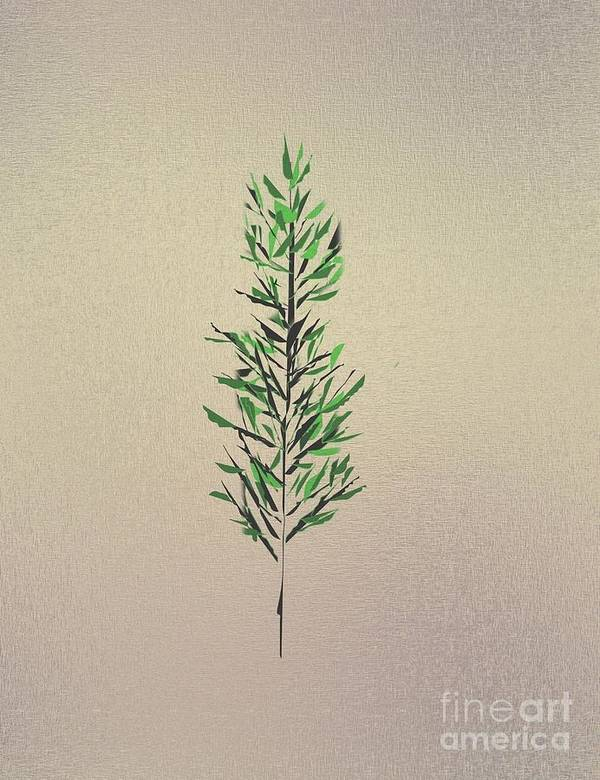 Abstract Poster featuring the drawing Green Leaves by John Krakora