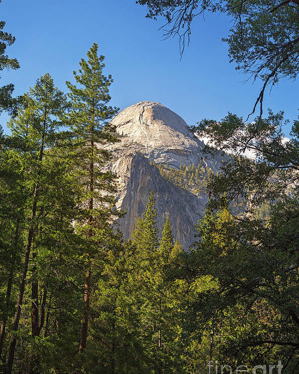 Alpine Poster featuring the photograph Half Dome Yosemite by Jane Rix
