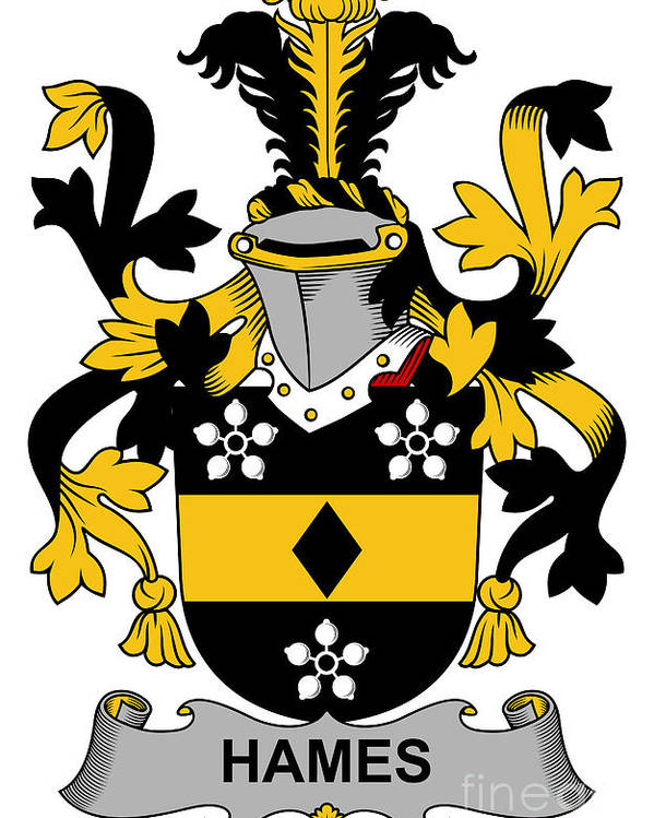 Hames Poster featuring the digital art Hames Coat Of Arms Irish by Heraldry