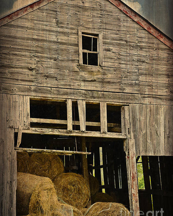 Hay Poster featuring the photograph Hay For Sale by Alana Ranney