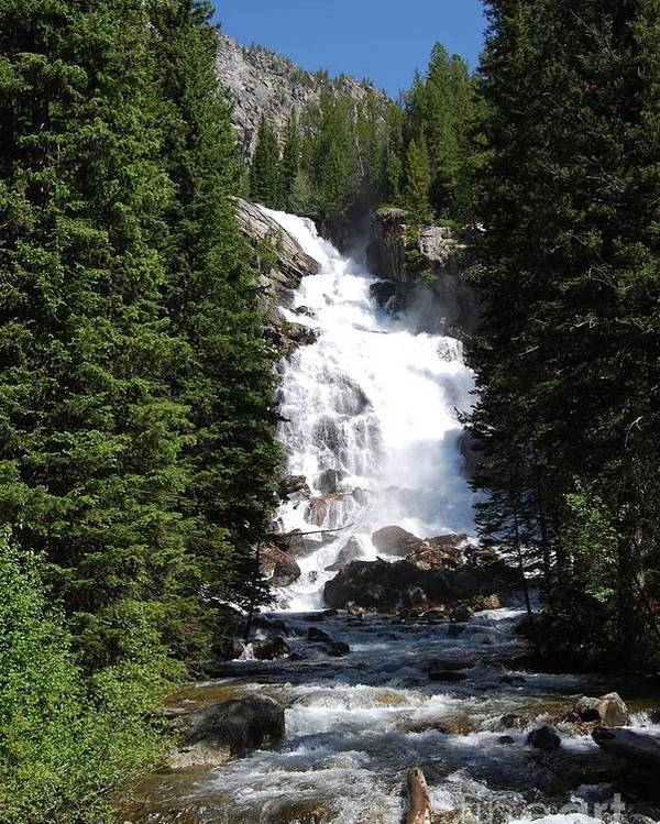 Waterfall Poster featuring the photograph Hidden Falls by Deanna Cagle