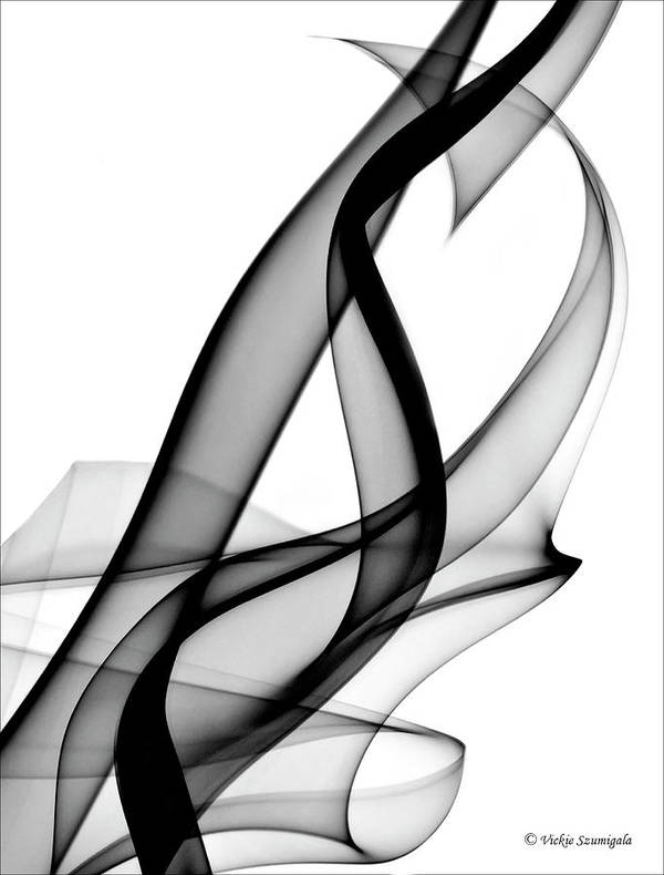 Smoke Poster featuring the photograph Hidden Heart by Vickie Szumigala