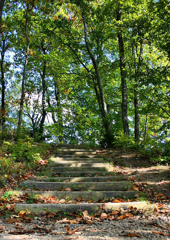Stairs Poster featuring the photograph Hiking In Virginia Kendall by Kristin Elmquist