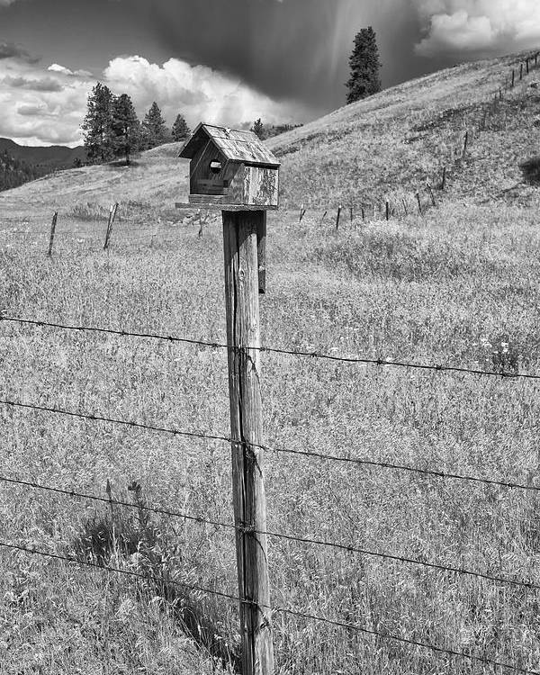 Black And White Photography Poster featuring the photograph Home Home On The Range by Allan Van Gasbeck