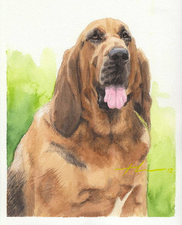 <a Href=http://miketheuer.com Target =_blank>www.miketheuer.com</a> Hound Dog Watercolor Portrait Poster featuring the drawing Hound Dog Watercolor Portrait by Mike Theuer