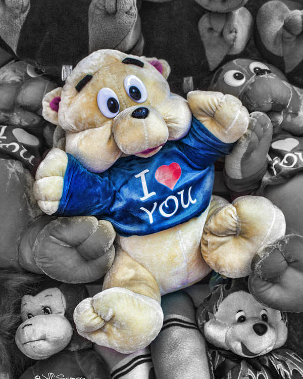 Teddy Bear Poster featuring the photograph I Love You by Jeff Swanson