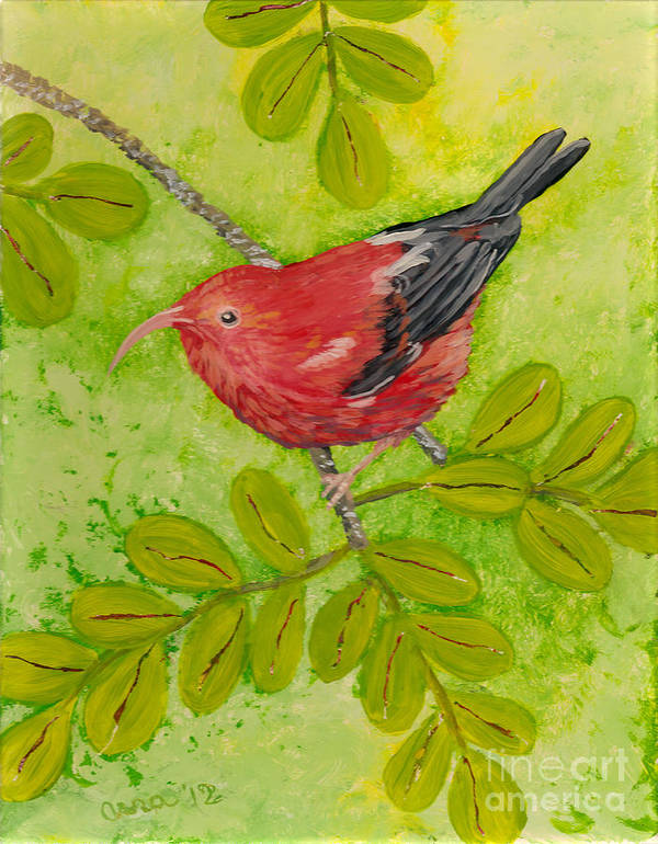 Hawaii Birds Poster featuring the painting 'i'iwi by Anna Skaradzinska