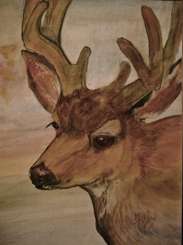 Deer Poster featuring the painting In Velvet by Mary Tevebaugh