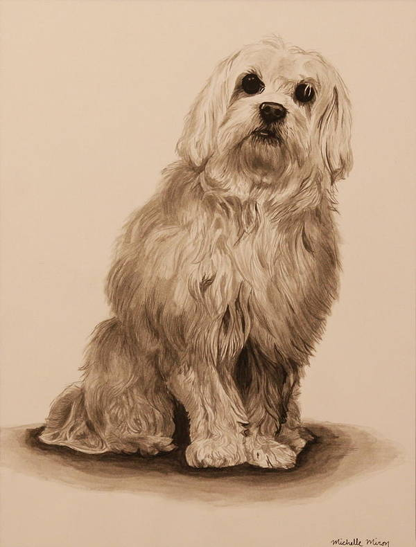 Dog Poster featuring the painting Ink Dog by Michelle Miron-Rebbe