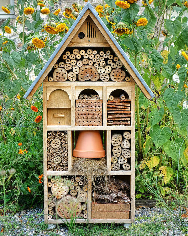 Craftsman Poster featuring the photograph Insect Hotel by Olivier Le Queinec