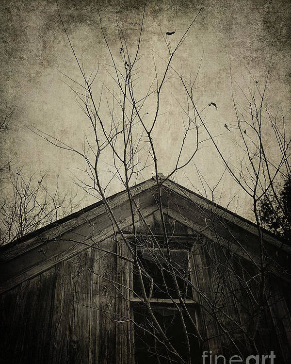 House Poster featuring the photograph Into The Dark Past by Trish Mistric