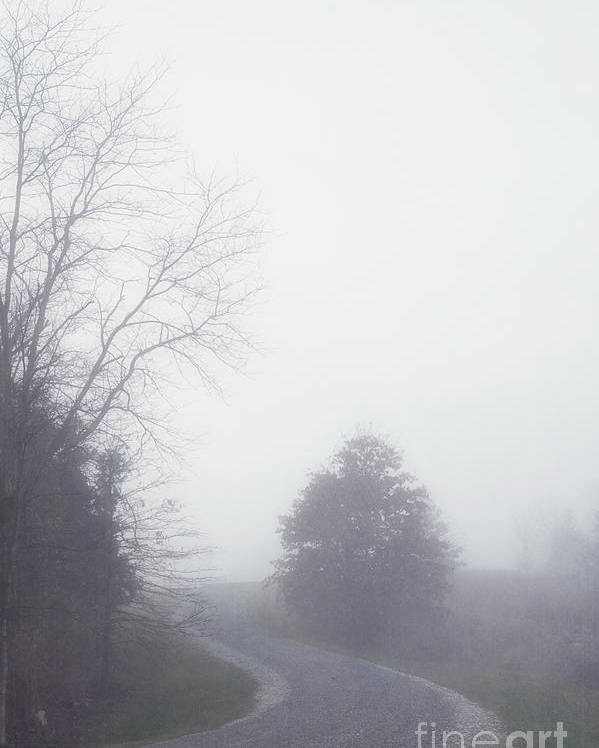 Fog Poster featuring the photograph Into The Fog by Kay Pickens