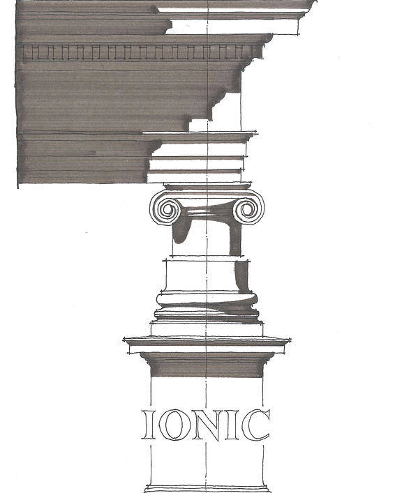 Architecture Poster featuring the drawing Ionic Order by Calvin Durham