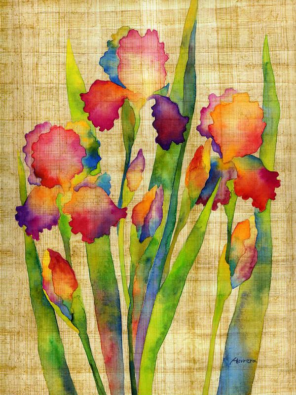 Iris Poster featuring the painting Iris Elegance On Yellow by Hailey E Herrera