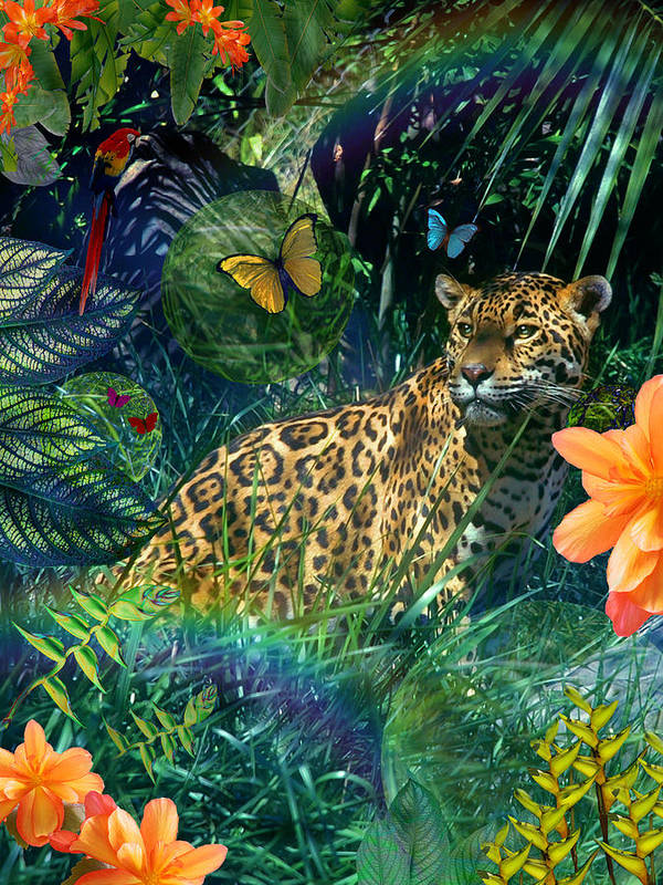 Alixandra Mullins Poster featuring the photograph Jaguar Meadow by Alixandra Mullins