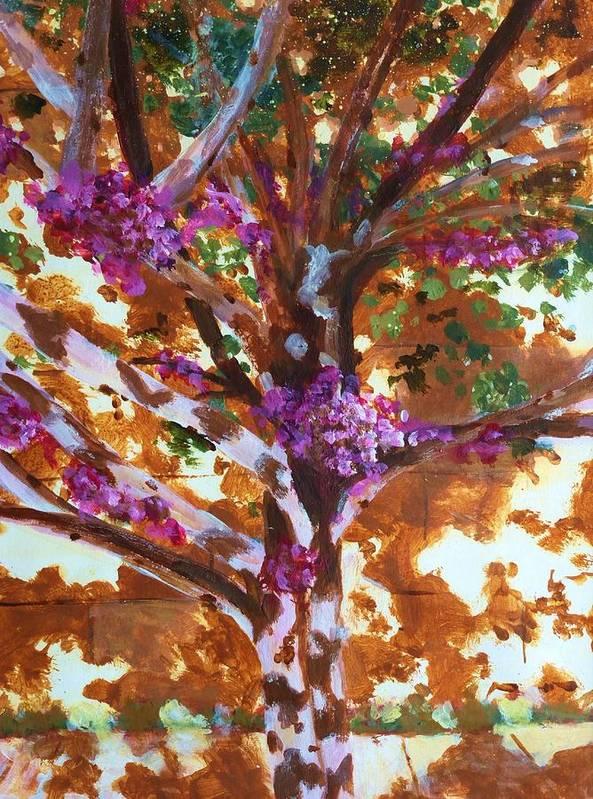 Judas Tree Poster featuring the painting Judas Tree Jerusalem by Nigel Radcliffe