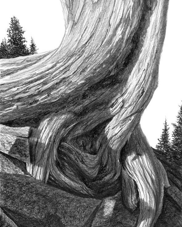 Mountain Poster featuring the drawing July 12 by Doug Fluckiger