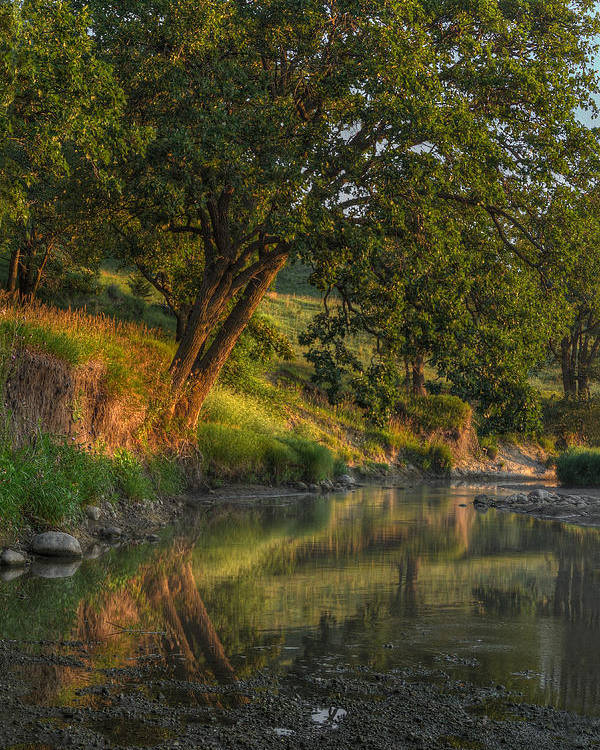 Landscape Poster featuring the photograph July Morning along the Creek by Bruce Morrison