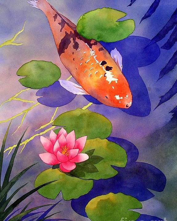 Watercolor Poster featuring the painting Koi Pond by Robert Hooper