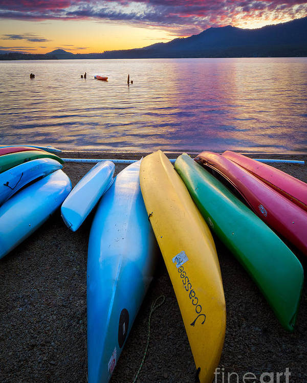 America Poster featuring the photograph Lake Quinault Kayaks by Inge Johnsson
