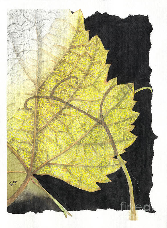 Foliage Poster featuring the painting Leaf by Elena Yakubovich
