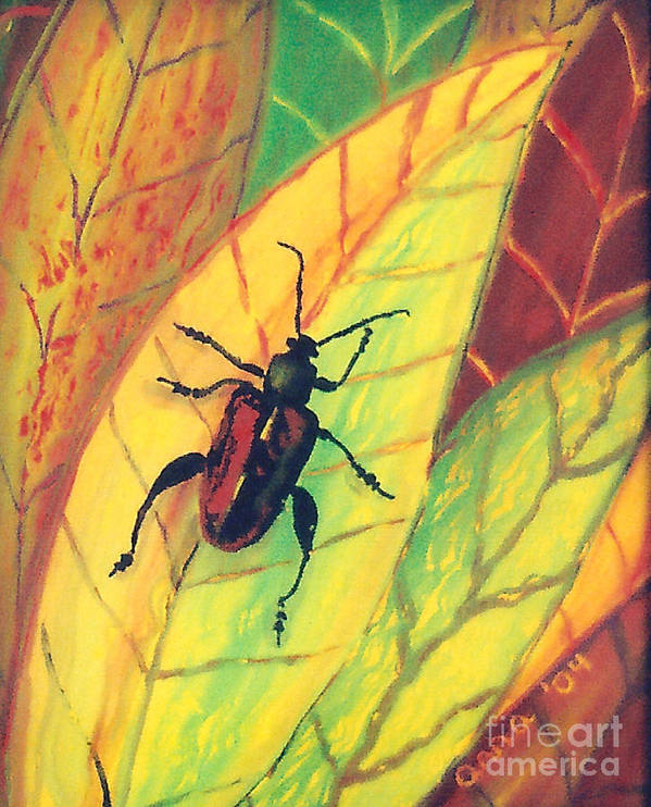 Insect Poster featuring the painting Leaf Surfer by Anna Skaradzinska