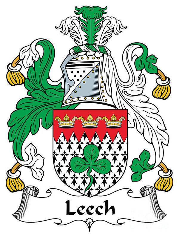 Leech Poster featuring the digital art Leech Coat Of Arms Irish by Heraldry
