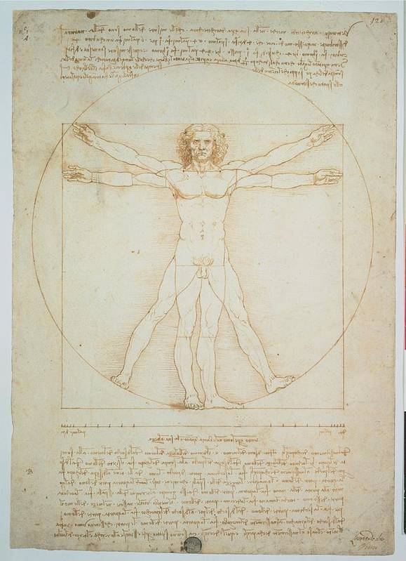 Circle Poster featuring the photograph Leonardo Da Vinci, Vitruvian Man - by Everett