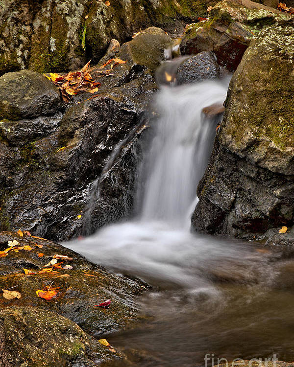 Fall Poster featuring the photograph Lepetit Waterfall by Susan Candelario