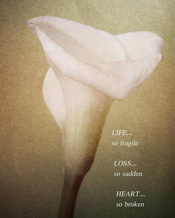Calla Lilly Poster featuring the photograph Life Loss Heart by Fran James