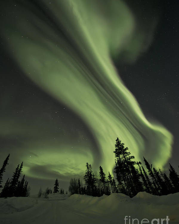 Aurora Borealis Poster featuring the photograph Light Swirls Over The Midnight Dome by Priska Wettstein