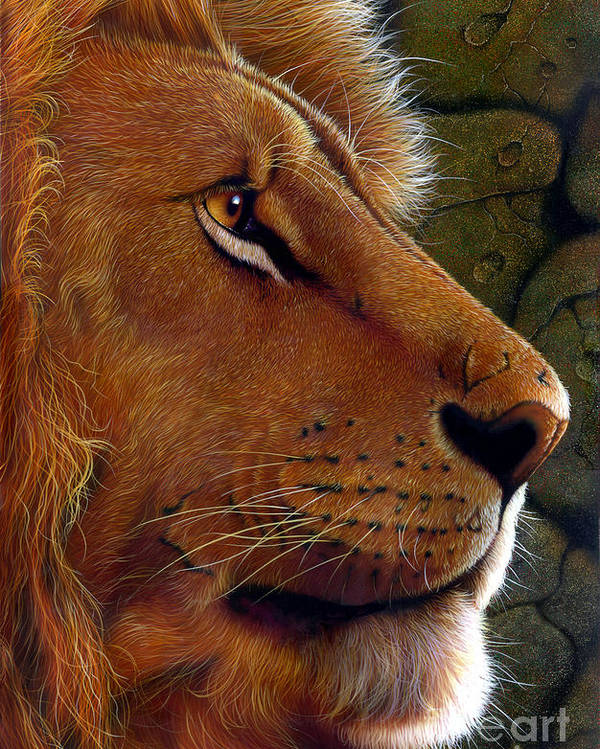 Lion King Poster featuring the painting Lion King by Jurek Zamoyski
