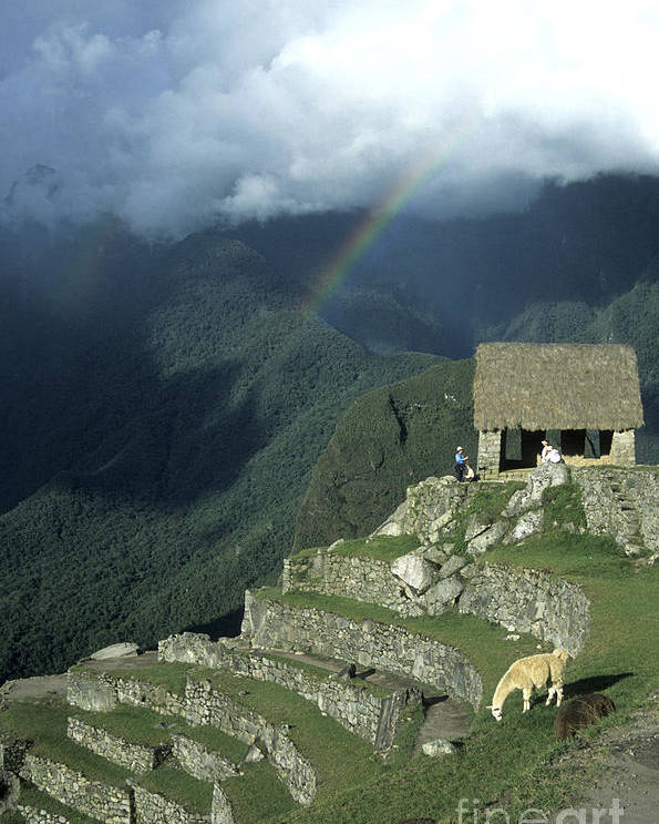 Machu Picchu Poster featuring the photograph Llama And Rainbow At Machu Picchu by James Brunker
