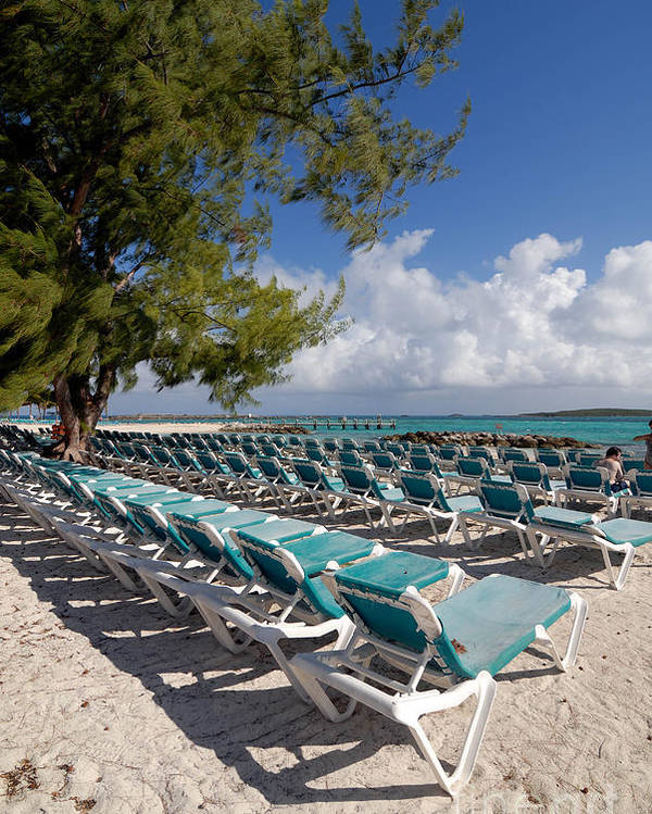 Bahamas Poster featuring the photograph Lounge Chairs On The Beach by Amy Cicconi