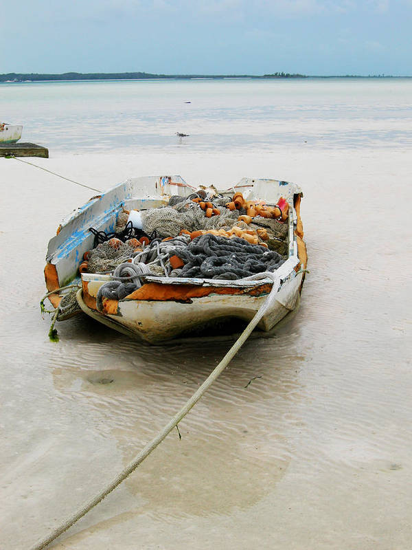 Boat Poster featuring the photograph Low Tide by Sarah-jane Laubscher