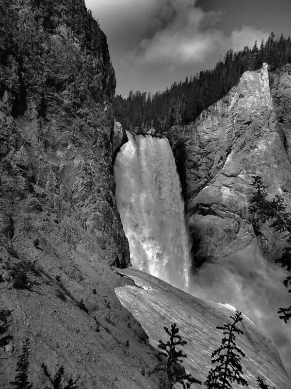 Lower Falls In Yellowstone In Black And White Poster featuring the photograph Lower Falls In Yellowstone In Black And White by Dan Sproul