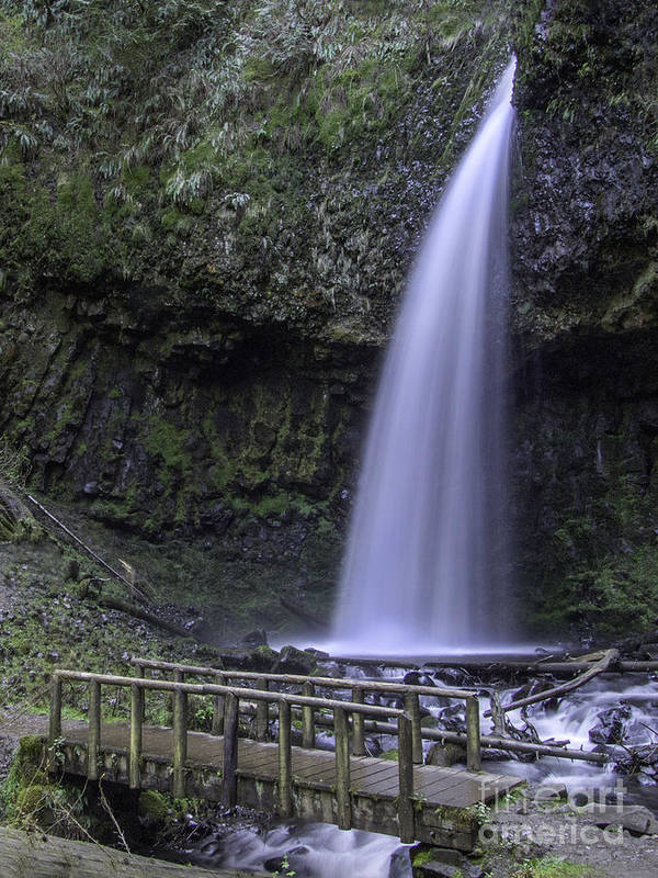 :ower Latourell Falls Poster featuring the photograph Lower Latourell Falls by Tim Moore
