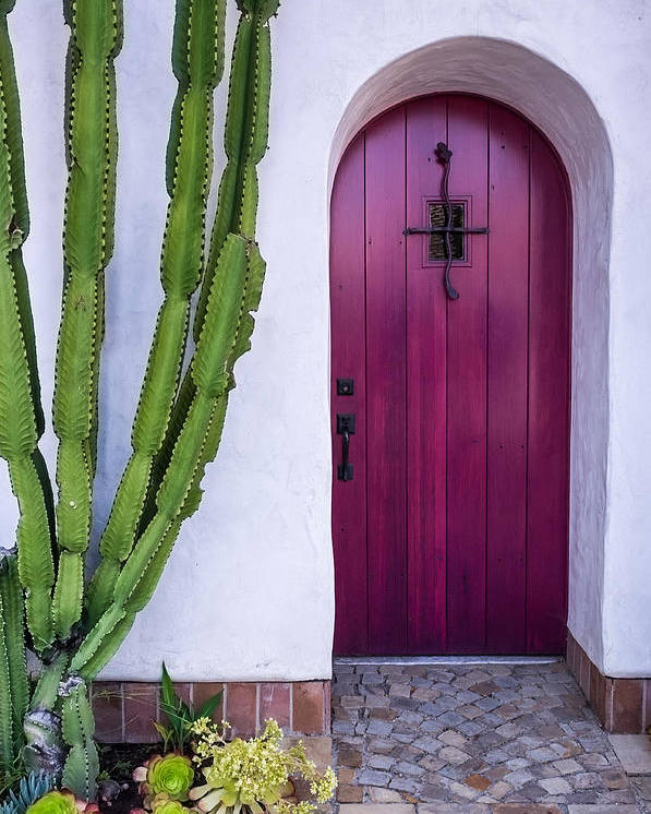 Door Poster featuring the photograph Magenta Door by Thomas Hall