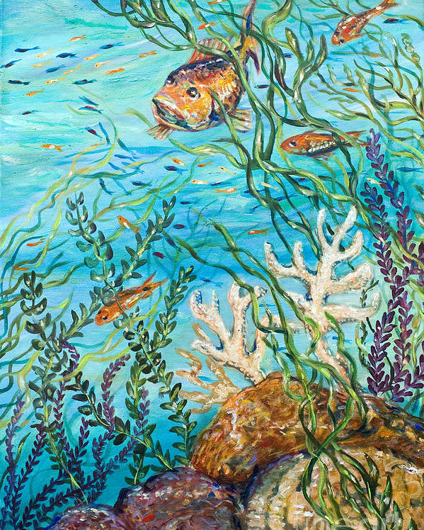 Coral Reef Poster featuring the painting Maho Bay Right by Linda Olsen