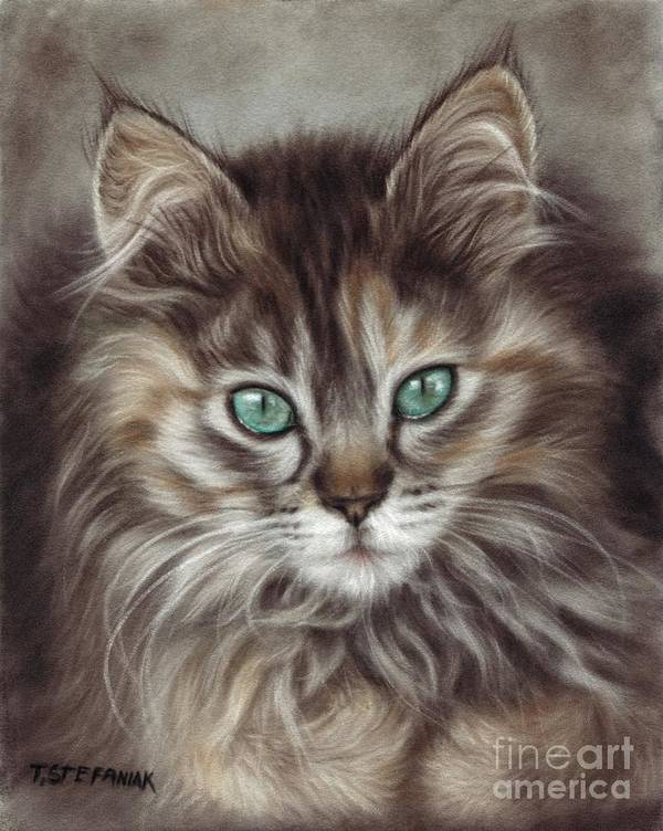 Cats Poster featuring the drawing Maine Coon by Tobiasz Stefaniak
