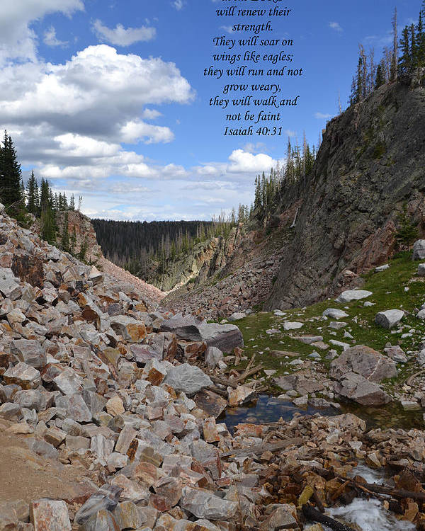 Scripture Poster featuring the photograph Majestic View by Kathy Hesterberg