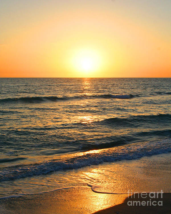 Florida Poster featuring the photograph Manasota Key Sunset by Todd L Thomas